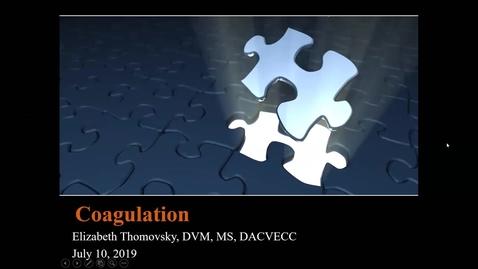 Thumbnail for entry Coagulation: ACVECC Exam Webinar July 10, 2019
