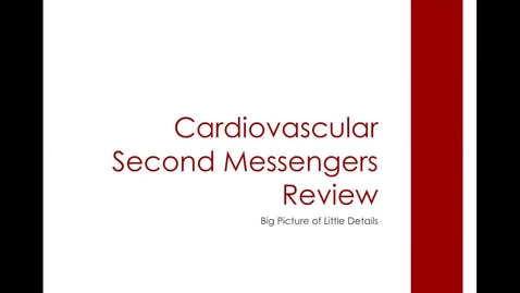 Thumbnail for entry CV 2nd Messengers: ACVECC Exam Webinar July 23, 2019