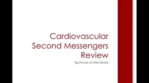 Thumbnail for entry CV 2nd Messengers: ACVECC Exam Webinar July 23, 2019