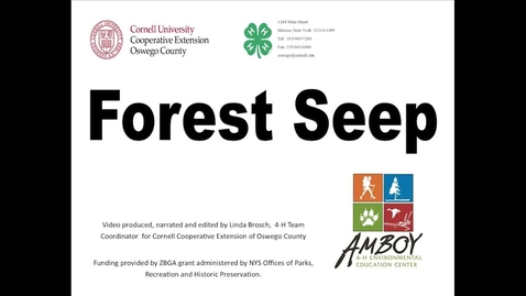 Thumbnail for entry CCE Oswego 4H Forest Seeps