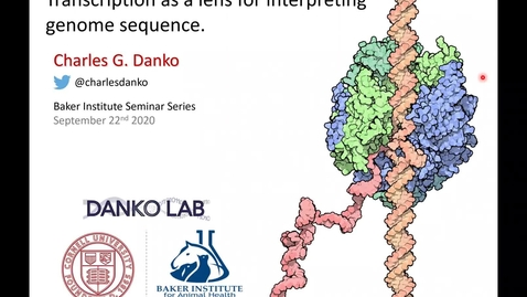 "Thumbnail for entry Baker Institute Seminar Series: Charles Danko, PhD ""Transcription as a lens for interpreting genome sequence"""