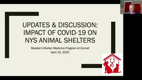 Thumbnail for entry Clip of APRIL 10th Updates & Discussion: The Impact of COVID-19 on NYS Animal Shelters