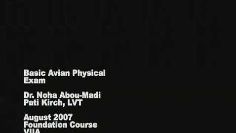 Thumbnail for entry Avian Physical Exam