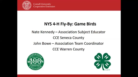 Thumbnail for entry 4-H Fly By- Game Birds and Mallard Ducks