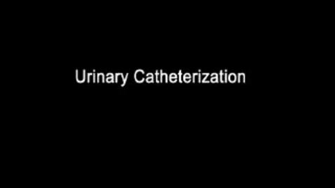 Thumbnail for entry Feline Urethral Catherization