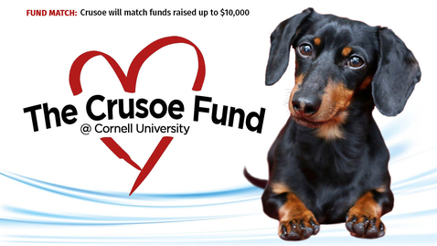 Thumbnail for entry The Crusoe Fund at Cornell University