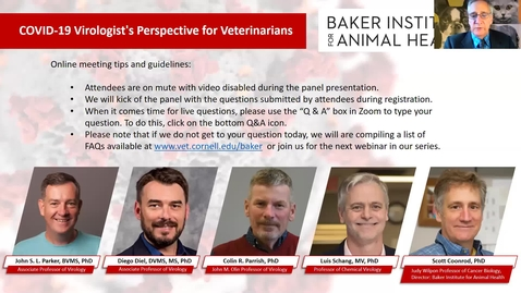 Thumbnail for entry Clip of Clip of COVID-19 – A Virologist's Perspective for Veterinarians - Baker Institute for Animal Health -