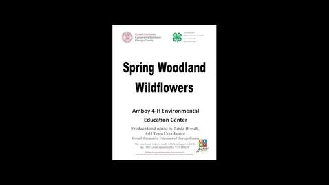 Thumbnail for entry CCEOswego 4H Three Spring Woodland Flowers.mp4