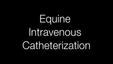 Thumbnail for entry Equine Intravenous Catherization