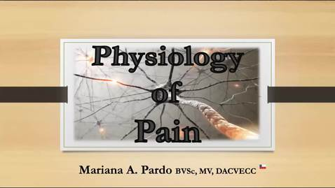 Thumbnail for entry Physiology of Pain: ACVECC Exam Webinar August 5, 2019