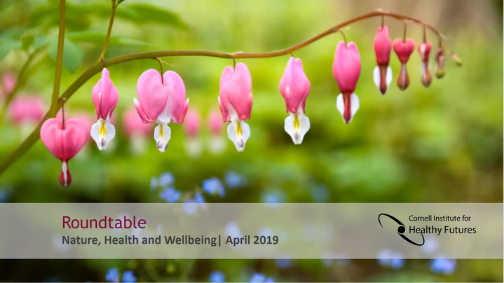 Thumbnail for channel CIHF 2019 ROUNDTABLE: Nature Health and Wellbeing