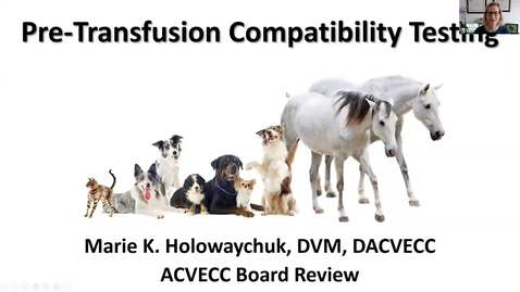 Thumbnail for entry Pretransfusion Compatibility Testing: ACVECC Exam Webinar August 28, 2019