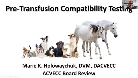 Thumbnail for entry Pretransfusion Compatibility Testing: ACVECC Exam Webinar August 28, 2019