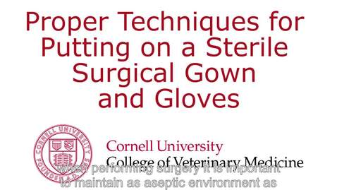 Thumbnail for entry Sterile Gowning Procedure 2
