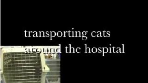 Thumbnail for entry Feline Transport