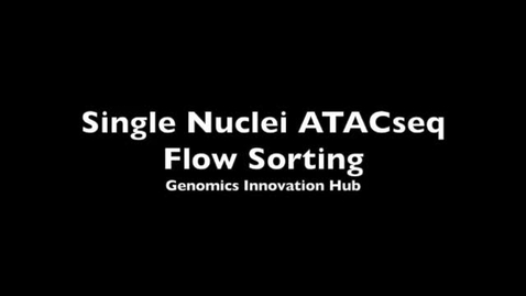 Thumbnail for entry snATACseq-tagmentation and FACS  - SD 480p