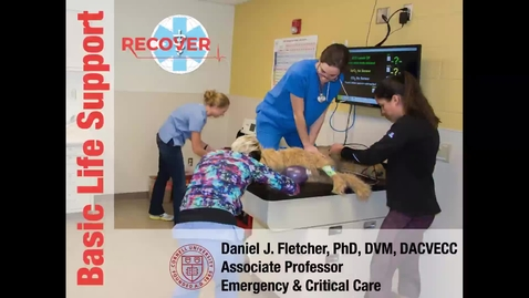 Thumbnail for entry CPR and PCA Care: ACVECC Exam Webinar August 14, 2019