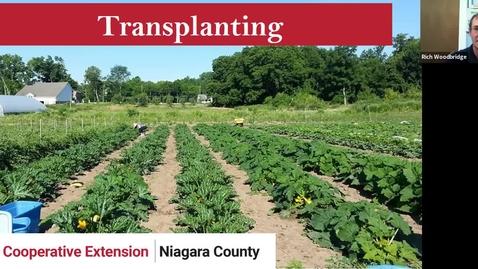 Thumbnail for entry Transplanting on a Market Farm - Final