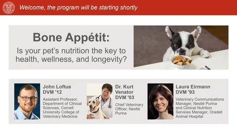 Thumbnail for entry Bone Appétit: Is your pet's nutrition the key to health, wellness, and longevity?
