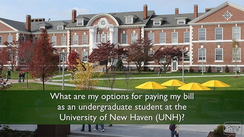 What are my options for paying my bill as an undergraduate student at the University of New Haven (UNH)?