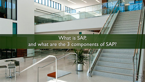 What is SAP and what are the 3 components of SAP?