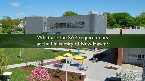 What are the SAP requirements at the University of New Haven?