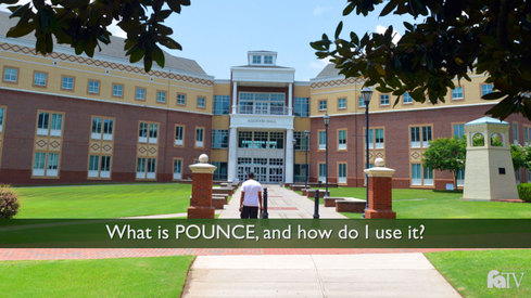 What is POUNCE and how do I use it?