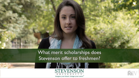 What merit scholarships does Stevenson offer to freshmen?
