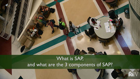 Thumbnail of What is SAP, and what are the 3 components of SAP?