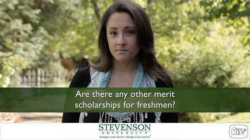 Are there any other merit scholarships for freshmen?