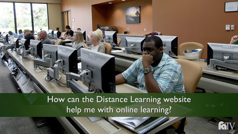 How can the Distance Learning website help me with online learning?