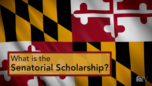 What is the Senatorial Scholarship?