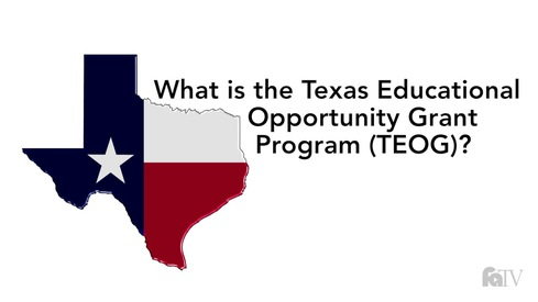 What is the Texas Educational Opportunity Grant Program (TEOG)?