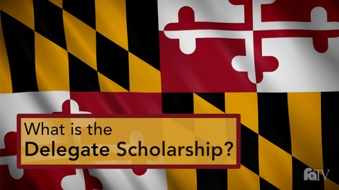 What is the Delegate Scholarship?