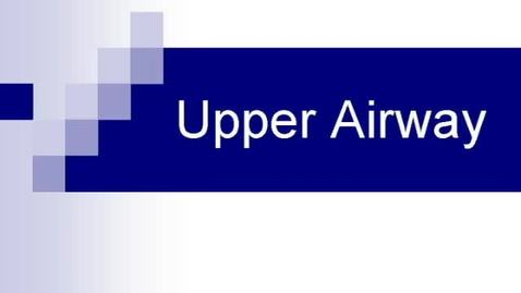Thumbnail for entry Upper_Airway_HR