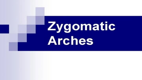 Thumbnail for entry zygomatic_arches_HR