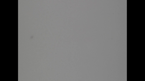 Thumbnail for entry Waynesburg_University_1962-11-10_10-0_1_H264