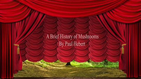 Thumbnail for entry A Brief History of Mushrooms (Paul Hebert, 2021)