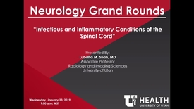 Thumbnail for entry Infectious and Inflammatory Conditions of the Spinal Cord