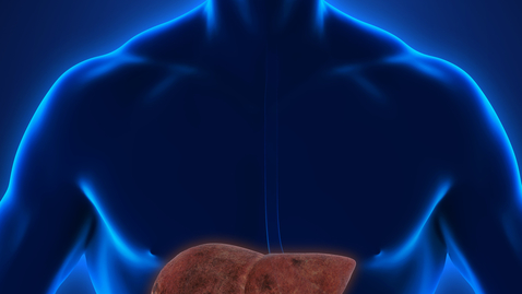 Thumbnail for entry Could You Have Fatty Liver Disease?