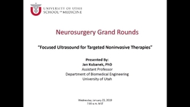 Thumbnail for entry Focused Ultrasound for Targeted Noninvasive Therapies