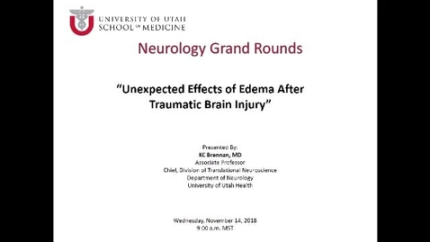 Thumbnail for entry Unexpected Effects of Edema after Traumatic Brain Injury