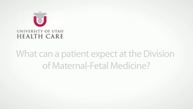 Thumbnail for entry What can a patient expect at the Division of Maternal-Fetal Medicine?