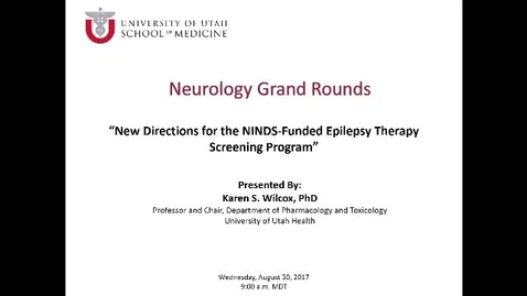 New Directions for the NINDS-Funded Epilepsy Therapy Screening Program