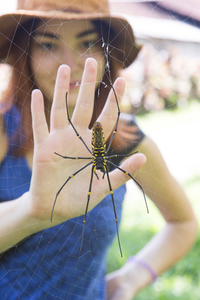 Should I Go to the Doctor for a Spider Bite? | University of