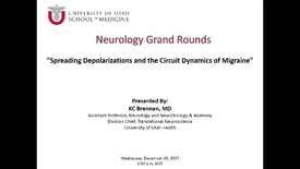 Thumbnail for entry Spreading Depolarizations and the Circuit Dynamics of Migraine