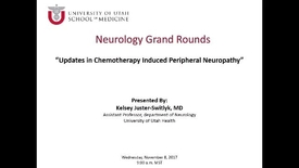Thumbnail for entry Updates in Chemotherapy Induced Peripheral Neuropathy