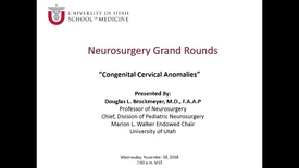 Thumbnail for entry Congenital Cervical Anomalies