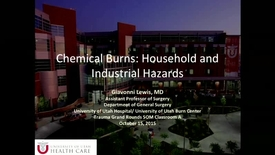 Thumbnail for entry 10/15/15 Chemical Burns: Household and Industrial Hazards