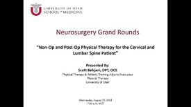 Thumbnail for entry Non-Op and Post-Op Physical Therapy for the Cervical and Lumbar Spine Patient